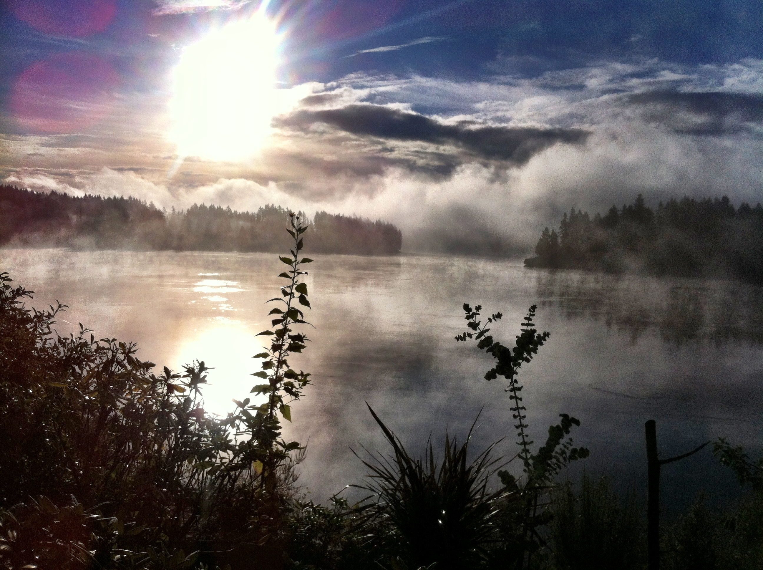 Mist Over Hammersley Inlet