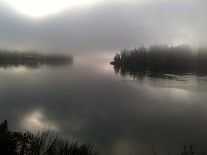 Mist hanging over Hammersley Inlet.