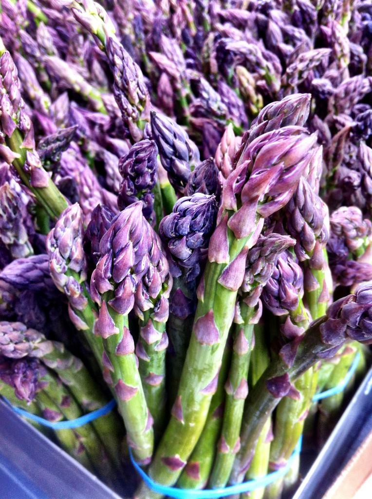 Fresh Asparagus at the Olympia Farmers Market
