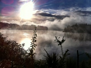 Mist Rising over Hammersley Inlet