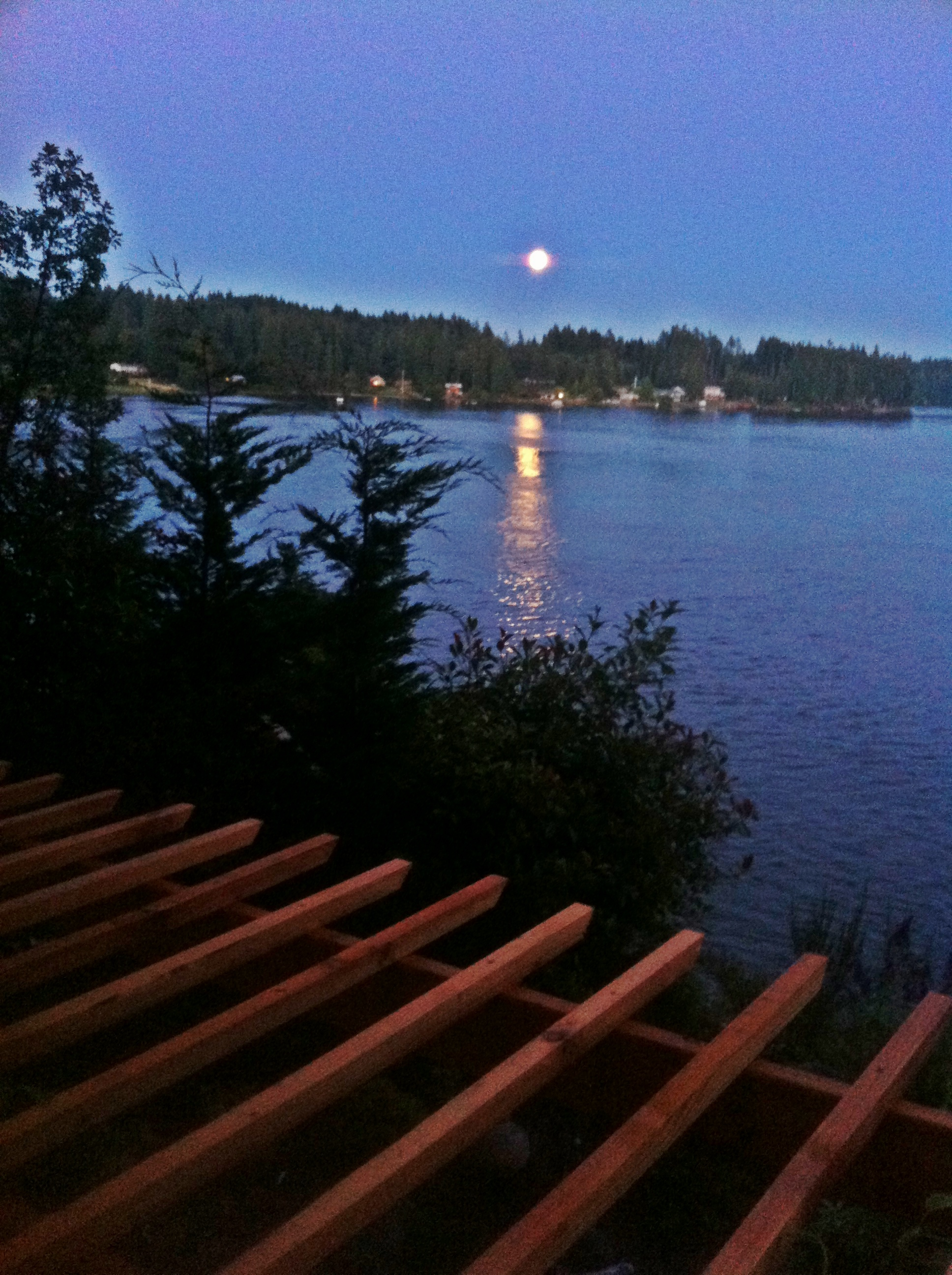 Moonlight Over Hammersley Inlet
